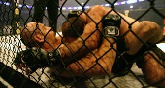 עד שתצא נשמתכם: בלוג MMA חדש – 31/01/2011